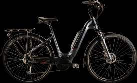 Thompson Enigma E-Bike Bosch Active Plus anthrazit