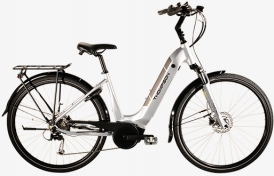 Thompson Altea E-Bike Bosch Active Plus