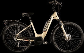 Thompson Enigma E-Bike Bosch Active Plus champagner