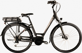 Thompson Synergy E-Bike Bosch Active Plus