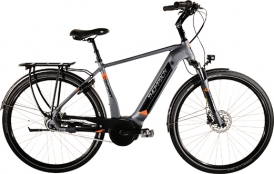 Thompson Comfort Inter LTD E-Bike Bosch Active Plus
